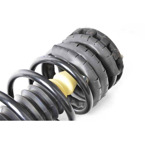 Shocks & Struts Quick-Strut 171616 Strut and Coil Spring Assembly